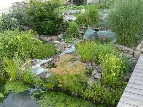 Gartenteich - Gartenteich mit wasserfall ...